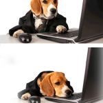 DOG BLOG SAD